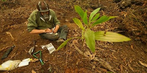 Pengumpulan data hasil analisa asap yang disebabkan oleh kebakaran lahan gambut di Kalimantan Tengah membantu menilai seberapa besar masalah yang terjadi. Aulia Erlangga/CIFOR