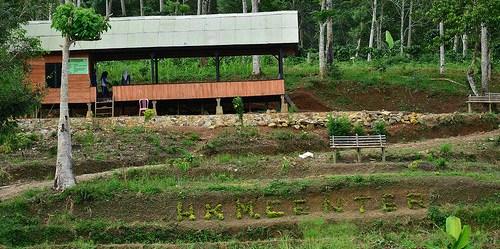 Hutan kemasyarakatan di desa Tribudi Sukur, Lampung Barat adalah salah satu sasaran program 12,7 juta hektar lahan bagi masyarakat.. Tuti Herawati/CIFOR