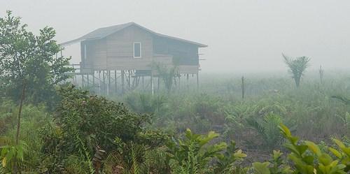Mencegah kebakaran dan asap di masa depan berarti menemukan apa yang sebenarnya terjadi di lapangan.