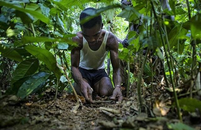 Cazadores de subsistencia en el Congo y la Amazonia coinciden en necesidades y retos.