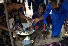 Striking a balance in bushmeat studies
