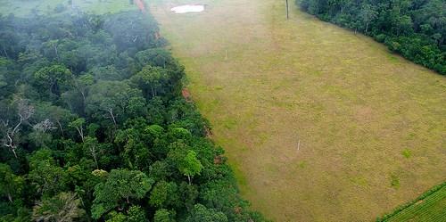 Foto udara menunjukkan kontras antara bentang alam hutan dan pertanian di dekat Rio Branco, Brasil.