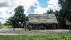 Comunidades, bosques y tenencia de la tierra: entender el pasado para atender el futuro