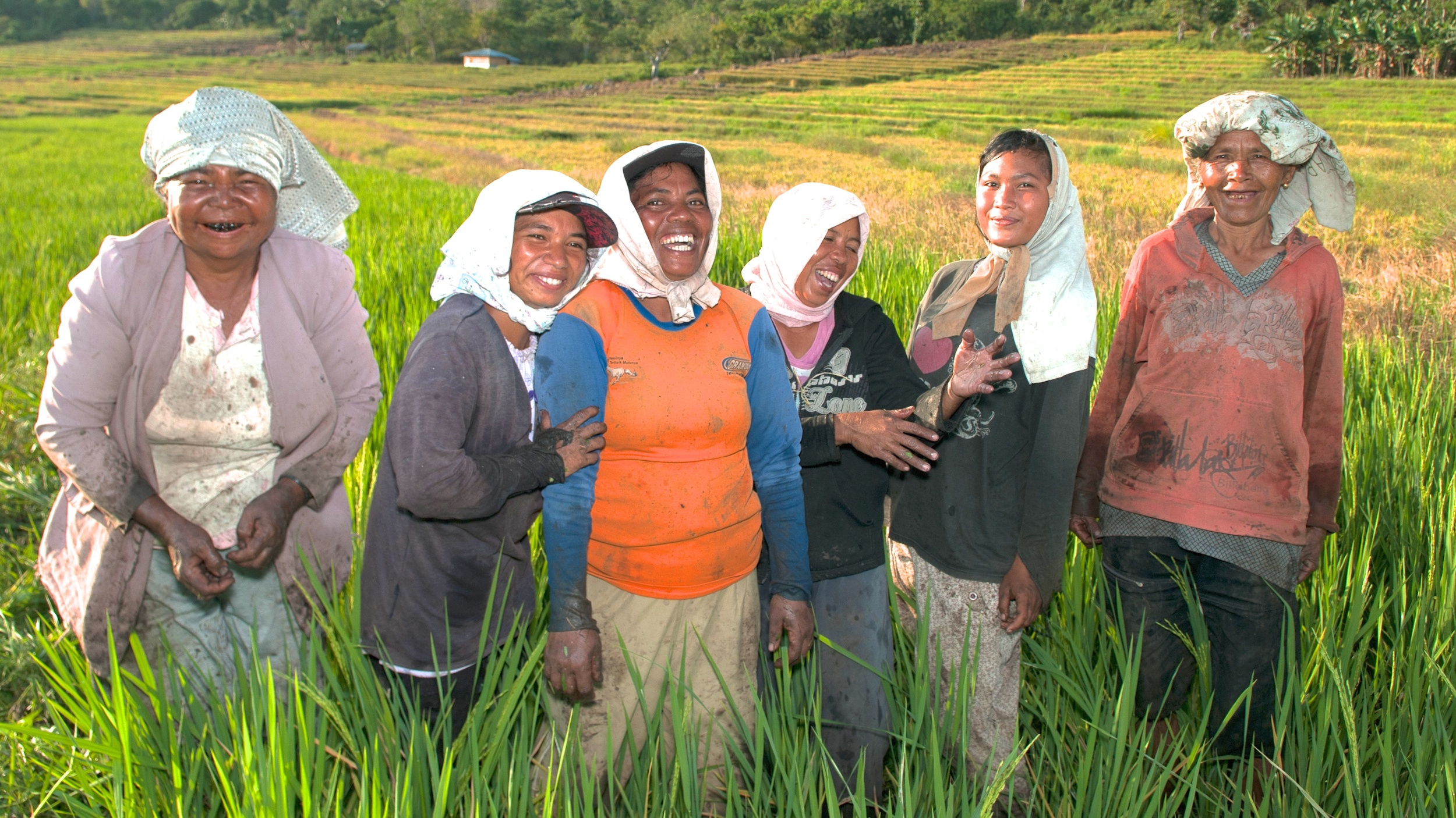 Rural women across the globe: Linking livelihoods and landscapes