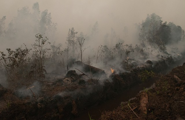 Fires rage on peat lands outside Palangka Raya, Central Kalimantan during the height of Indonesia's environmental crisis in 2015.