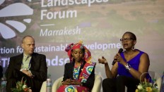 Permalink to: Highlights from the Global Landscapes Forum: Climate Action for Sustainable Development