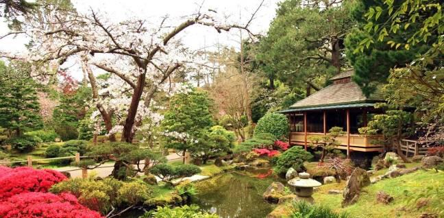 10. Tea Garden