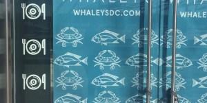 Whales raw bar