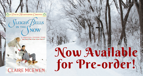 Sleigh Bells in the Snow is Available for Pre-order!