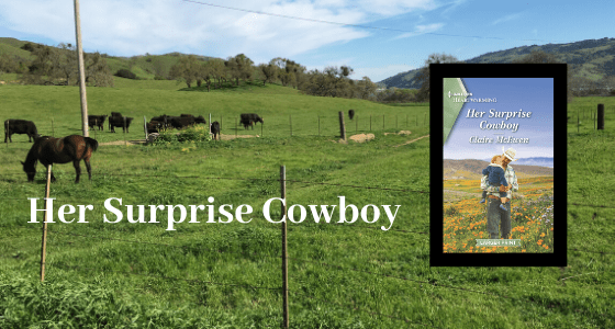 Her Surprise Cowboy, a story for springtime!