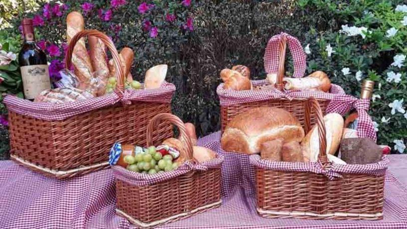 Planifica el picnic perfecto