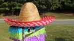 Que tu mascota también celebre la Independencia con sombreros mexicanos