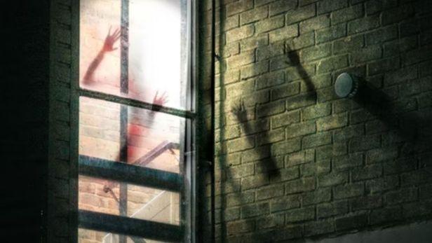 fantasma en la ventana - Claro Shop