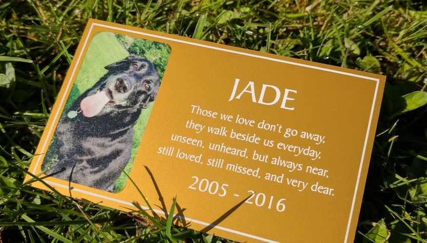 Gold coloured aluminium plaque with the name Jade on and little memorial description with a full colour printed photo.
