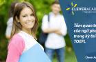 Tầm quan trọng của ngữ pháp trong kỳ thi TOEFL