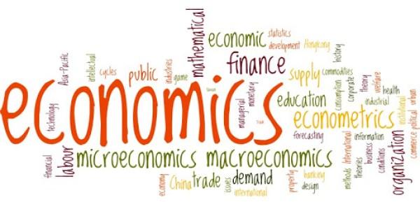 Ngành kinh tế học