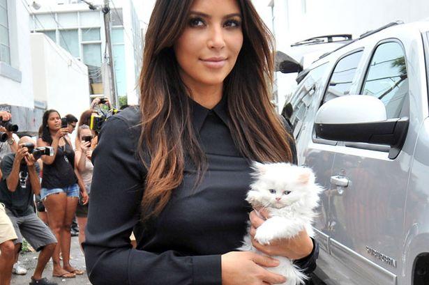 Kim e il suo gattino Mercy, scomparso qualche tempo fa!