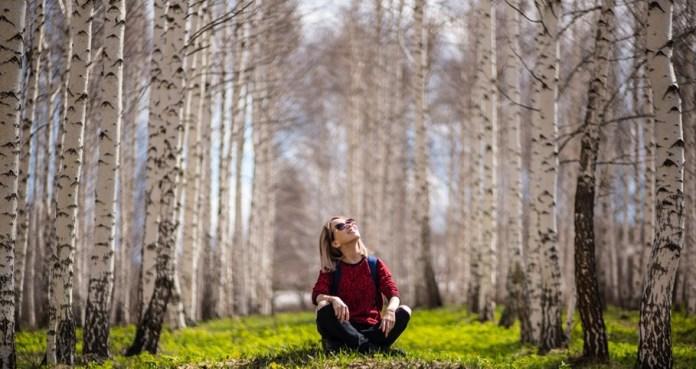 cliomakeup-come-scegliere-il-profumo-perfetto-legnosi.jpg