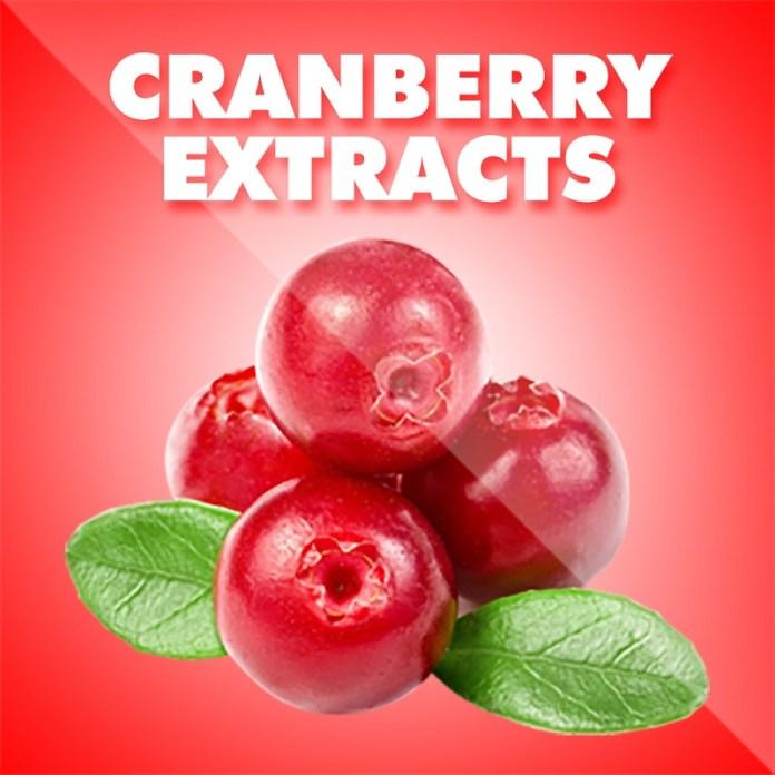 cliomakeup-cistite-prevenire-curare-16-cranberry