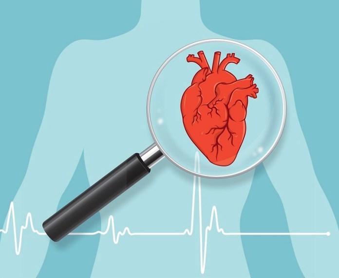 cliomakeup-circonferenza-vita-10-cardiovascular-disease.jpg