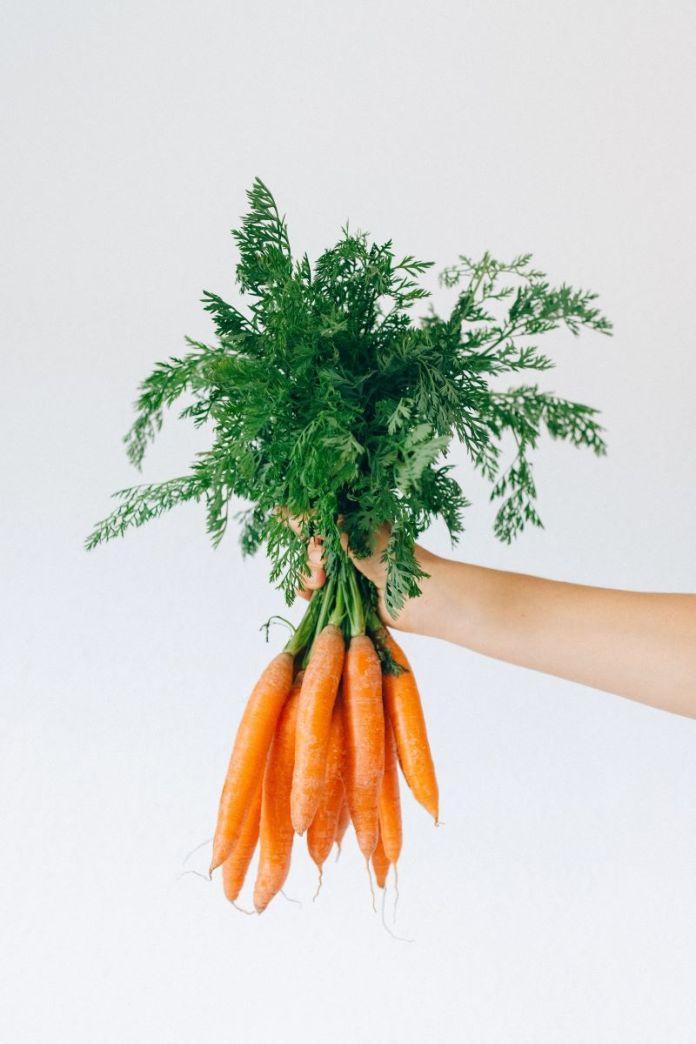 cliomakeup-cibi-a-calorie-negative-2-alimenti