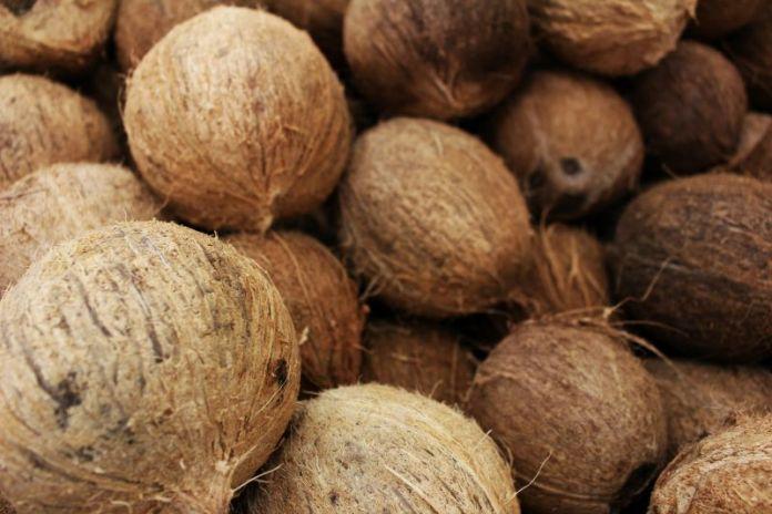 cliomakeup-olio-di-cocco-alimentare-7-produzione