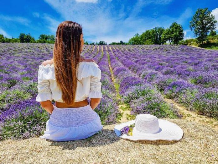 cliomakeup-campi-di-lavanda-in-italia-monferrato