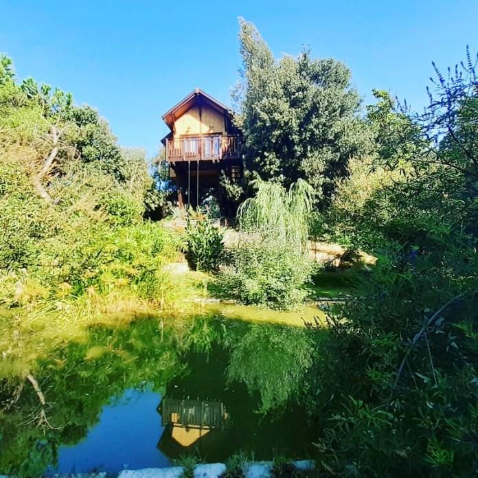 cliomakeup-case-sull-albero-italia-awen-tree-house