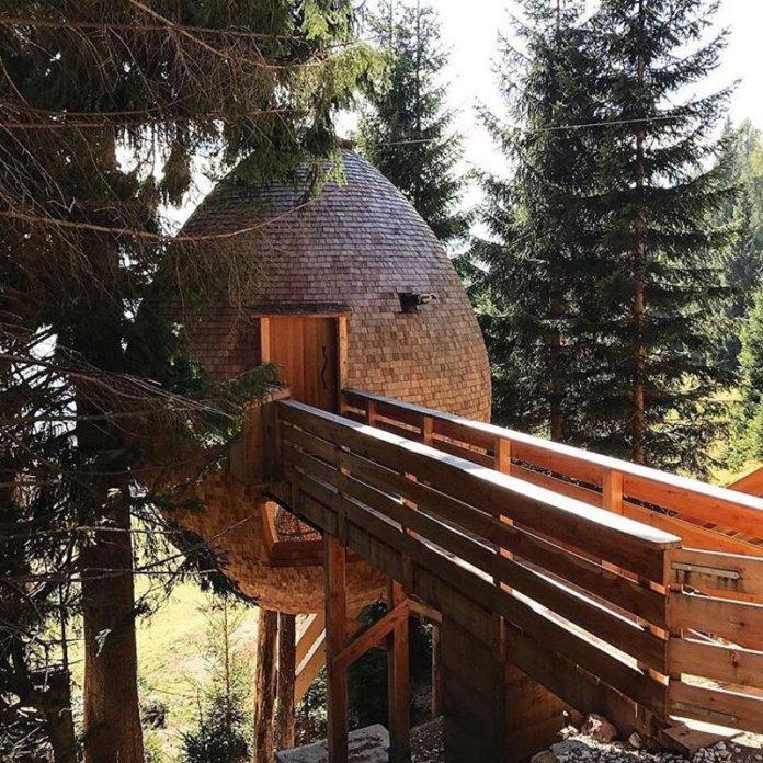 cliomakeup-case-sull-albero-italia-friuli-forma-di-pigna