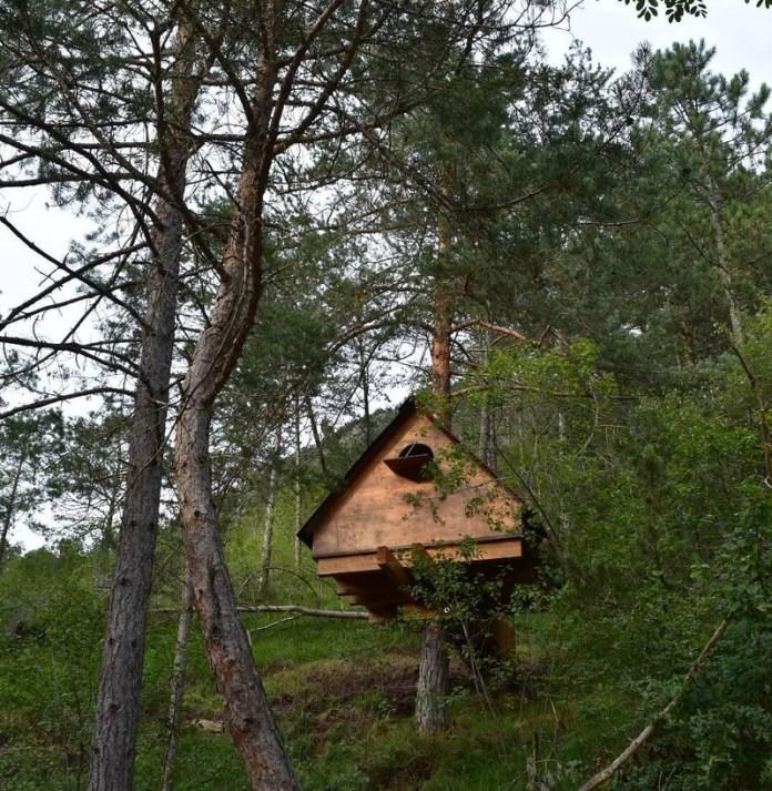 cliomakeup-case-sull-albero-italia-pordenone