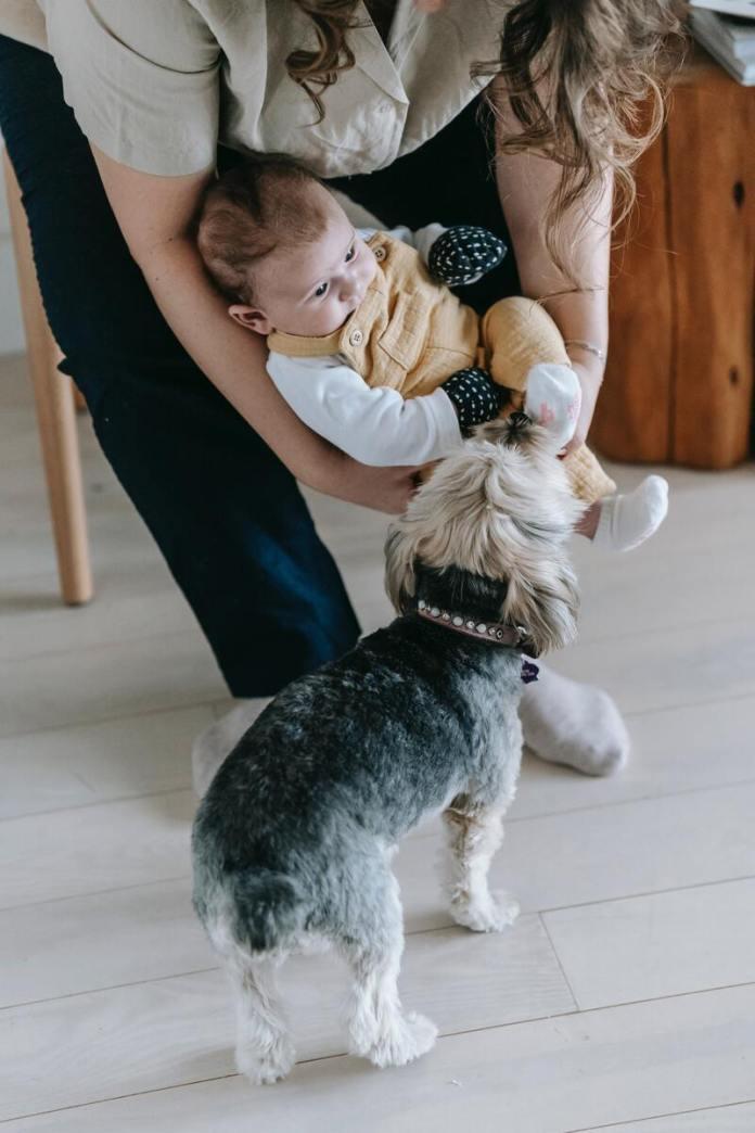 cliomakeup-animali-domestici-bambini-rispetto-in-casa