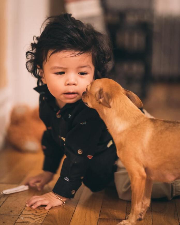cliomakeup-animali-domestici-bambini-soli