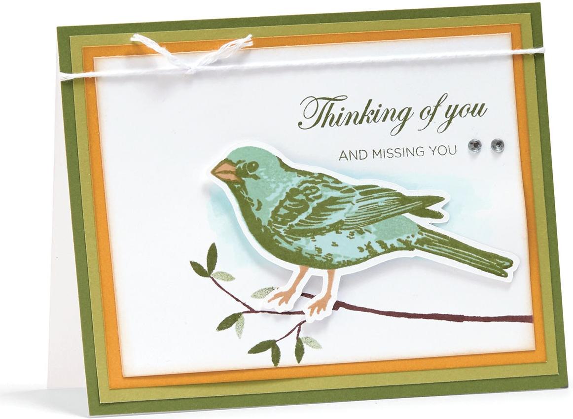 Base and Shade Stamp Set #CTMH #closetomyheart #baseandshade #base&shade #birdstamp #cardmaking #bird #branch