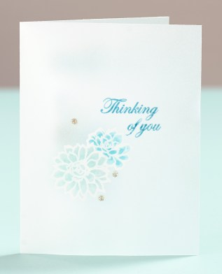 Stamping on Vellum #ctmh #closetomyheart #vellum #stamping #nsm #nationalstampingmonth #stampingtechniques #stampingtips #cardmaking #card