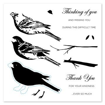 Base & Shade Stamping #ctmh #closetomyheart #layeredstamping #baseandshade #cardmaking #scrapbooking #thoughfulbird