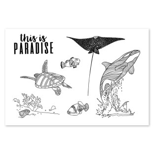 Australia Day Giveaway #ctmh #closetomyheart #australia #day #giveaway #aussie #greetings #paradise #sea #turtle #whale # #stingray #stamp #set #myacrylix