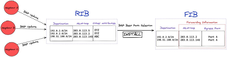 BGP_RIB_to_FIB