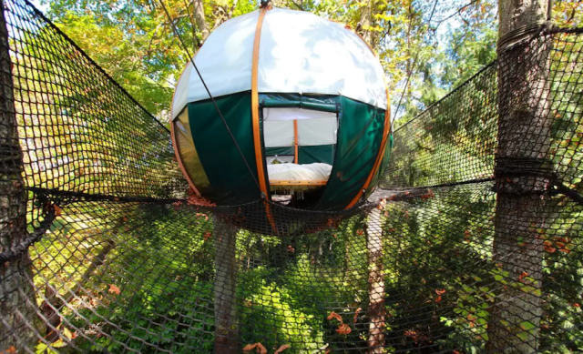 Here's a cocon (what?) you can stay at in France.