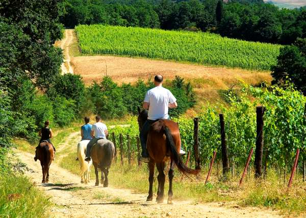 Tuscany on Horseback