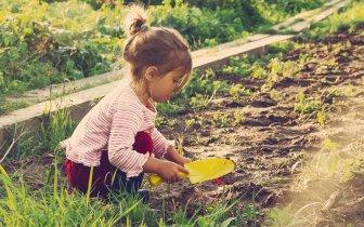 A importância da interação das crianças com a natureza