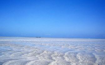 Maragogi, AL: principais praias e onde se hospedar