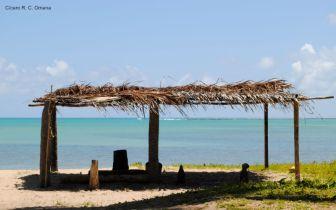 As belezas da praia do Patacho, Alagoas