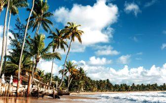 As belezas paradisíacas da Península de Maraú