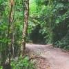 Dicas de trilhas incríveis para fazer no Brasil