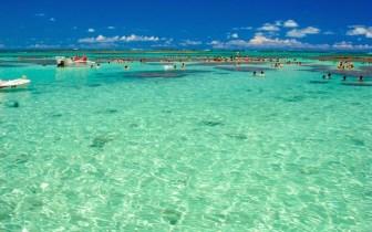 7 belíssimas praias de Alagoas para descansar e se divertir