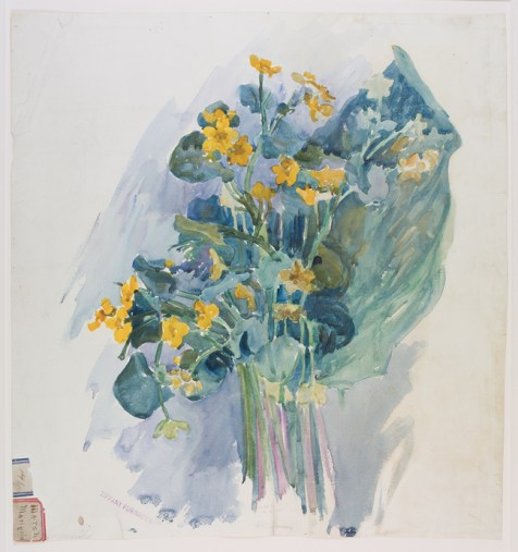 Marsh Marigold design drawing for Tiffany Furnaces by Alice C. Gouvy