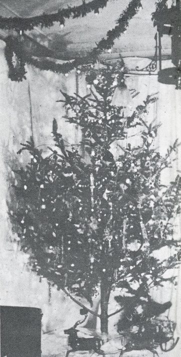 The first electrically-lit Christmas tree in 1882. (From pg. 25 of Christmas through the decades by Robert Brenner, 1993)