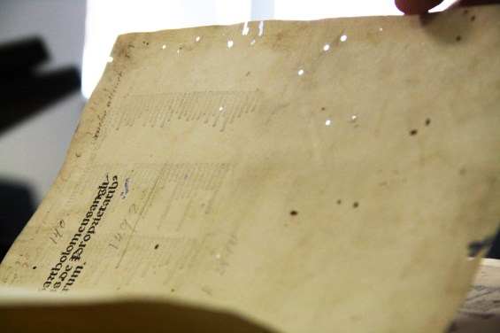 The small, round holes on this page are evidence of bookworms.