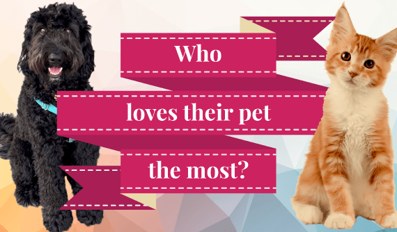 Who loves their pet the most?