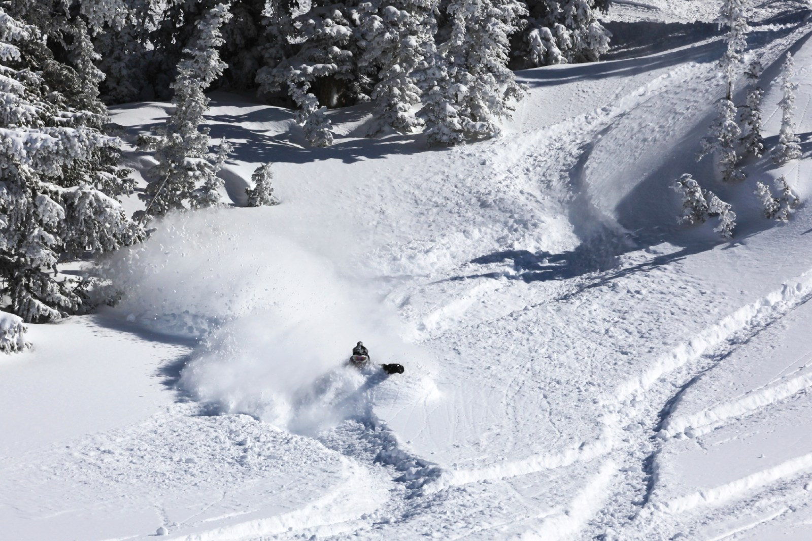 Man skiing through powder